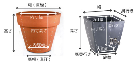 大き さ 鉢