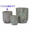 アビス・ユーポット 39cm (グリーン) (YT-AB-R37G13E)