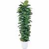 人工観葉植物 ヘゴ付ボトス 1.8m (TK-GD-09L)