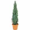 人工観葉植物 ヒバツリー ライトグリーン 1.5m (TK-GD-105L)