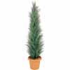 人工観葉植物 シーコーストツリー グレー 1.5m (TK-GD-106B)