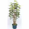 人工観葉植物 シュロチク5本立 鉢付 1.5m (TK-GD-127S)