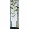 人工観葉植物 黒竹太竹 4m (TK-GD-139)