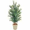 人工観葉植物 ユーカリ 1.8m (TK-GD-148)