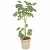 人工観葉植物 ウンベラータ 1.8m (TK-GD-154)