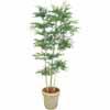 人工観葉植物 トネリコ 3本立 1.8m (TK-GD-156)
