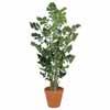 人工観葉植物 クジャクヤシ 1.9m (TK-GD-183)
