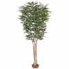 人工観葉植物 トネリコ 鉢無 2.2m (TK-GD-200)