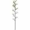 人工観葉植物 黒竹1本物 3m (TK-GD-24)
