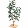 人工観葉植物 ミニつばき 板付 80cm (TK-GD-74)