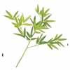 人工観葉植物 笹リーフ L40cm (TK-GN-11)