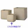 コーテス・キューブ 26cm (ベージュ) (YT-CT-002B09E)