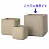 コーテス・キューブ 46cm (ベージュ) (YT-CT-002B15E)