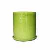ミランダラージ 28cm (緑) (IR-CP021SGn)