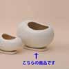 ビーンズ 白 L 46cm (IR-S017Wh)