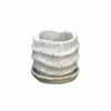 ウェーブラウンド 12cm (受け皿付) (ホワイト) (CP-HY1651SW)