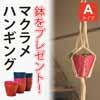 無料で植木鉢をプレゼント・マクラメハンギング Aタイプ (Z-MCH-01A)