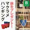 無料で植木鉢をプレゼント・マクラメハンギング Bタイプ (Z-MCH-01B)