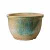 信楽焼 睡蓮鉢 淡緑水鉢 50cm (SG-SA94-1)