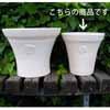 ���[�Y�E���E���h SW 29cm (KL-NW-84SW)