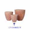 �e���N���} �n�X�N�|�b�g 31cm (YT-CM-R47X10E)