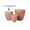 �e���N���} �n�X�N�|�b�g 41cm (YT-CM-R47X13E)